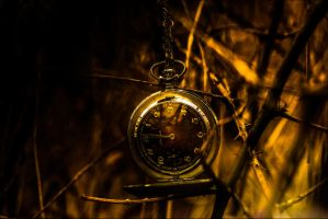 Time goes by... by db-photoblogDOTcom