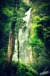 Waterfall - Laos by tarzzann