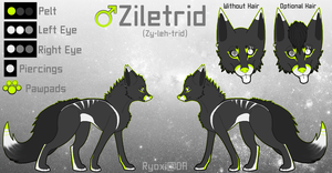 Ziletrid Reference by Ryoxi