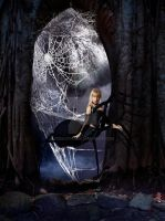 Come into my parlour said the spider to the fly by Kizzarina