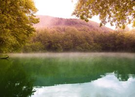 Foggy lake by SasoSi