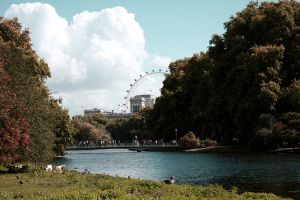 St James Park - London Eye view by Verdianapeace