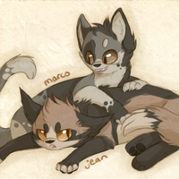 SnKitties // Jean and Marco by Sevech