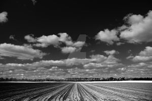 Plowed field and dramatic sky by kb135