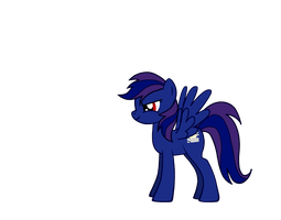 .Refrence. ~ Shadow Shade. by InsaneCuteKitty