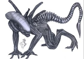 Alien crawling by Irkis