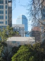Rialto Tower from the Park-2 by kayandjay100