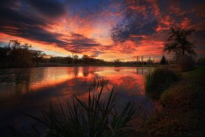 November Sunrise by FlorentCourty