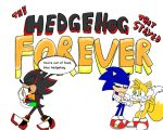 The Hedgehog that stayed Forever by Biosonic100