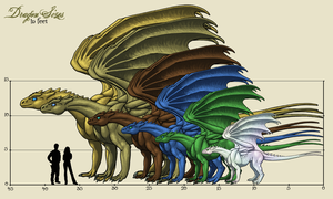 Pernese Dragon Sizes v2 by Sporelett