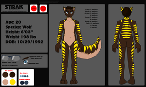 Strak's Reference Sheet 2013 by InvaderSonicMx