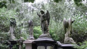 Abney Park Cemetery, London by OkeMani