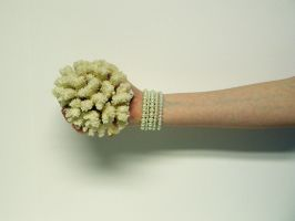 Hand with Coral Stock3 by D-is-for-Duck