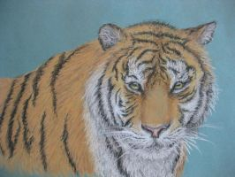 My 2nd experience in pastel drawing :) by InvisibleHorizon