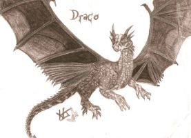 Dragonhearts Draco by ForbiddenLoveForever
