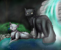 Greystripe and Silverstream by MorningDesiree