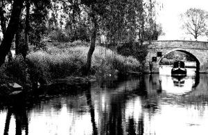 Riverside by tpphotography