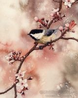 Spring Chickadee by MistiqueStudio