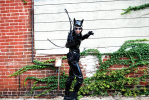 Catwoman Whip Cracking by ComfortablyEccentric