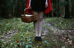 The tale of Red Riding Hood II by xessencex