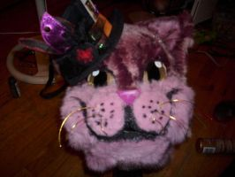 Cheshire head FINISHED by Disimprison