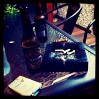 Cammel and beer by Vince-Zombie