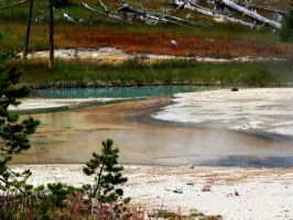 Norris Geyser Basin by KRHPhotography