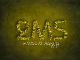 2ms new ds by mnoso90