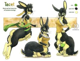 Tacet Reference by KaceyM