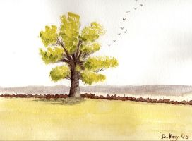 Tree Portrait by Don-Berry
