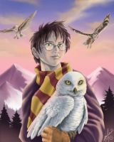 Harry Potter and Headwig by Amelie-ami-chan
