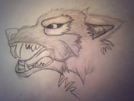 A Wolf Snarling by JoeJFG