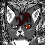 Free headshot for Snowpelt1236 by TheHollowhearted