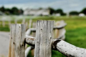 Posts In Heber by angelbabiau