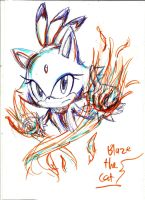 here, have a blaze doodle by sonicandsora25