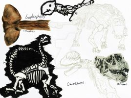 NHM Sketches: Dinosaurs 4 by HeavyClaw