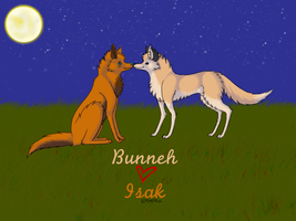 Bunneh and Isak by aamalthea