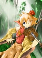 Fiddler in the woods by nz13590