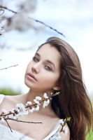 spring_1 by preThing