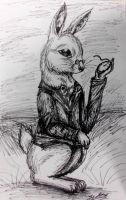 Project: White Rabbit by ScottishRedWolf