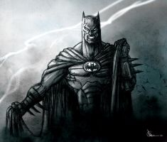 Dark Knight by rayyzer