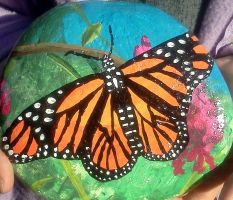 Monarch Butterfly #4 by AmandaFerguson070707