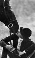Dressage Time Out - cropped by Everett1953