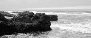Yachats intertidal zone - monochrome - 046 - X by ISeeTheLattice