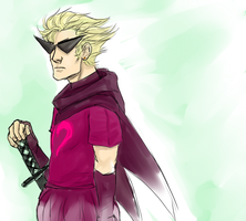 DIRK STRIDER by Vasheren