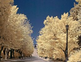 Athens park IR by agelisgeo