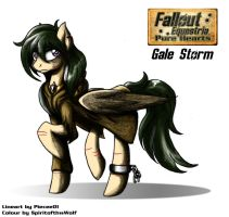 Collab: Gale Storm by SpiritofthwWolf