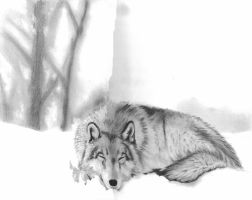 Sleeping In the Snow WIP2 by cjc7664