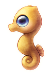 Seahorse by Pikishi