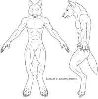 Werewolf Muscle Ref -- Lineart by sugarpoultry
